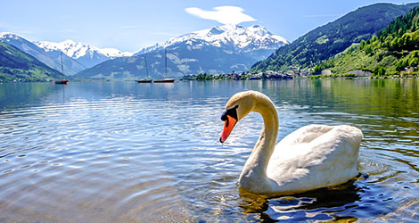 Zell am See 28